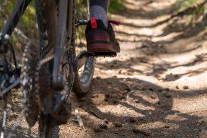 Radsport- und Tourismusverbände richten gemeinsamen Appell an die Politik